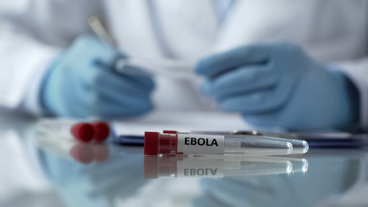 Jadi Pandemi di Guinea, Mungkinkah Virus Ebola Sampai Negara Kita?